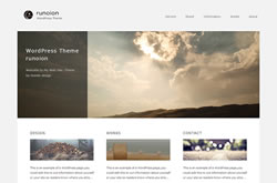 WordPress Theme runoion